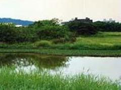 重视开发非传统水资源