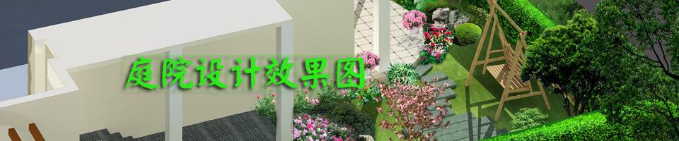 庭院设计效果图