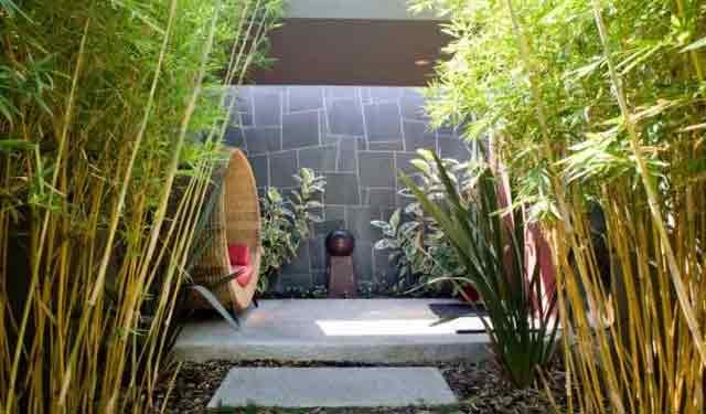 景观观赏竹常用9大设计手法