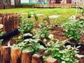 屋顶花园现场修建篇