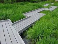 一个有颜有能力还有雨水花园!