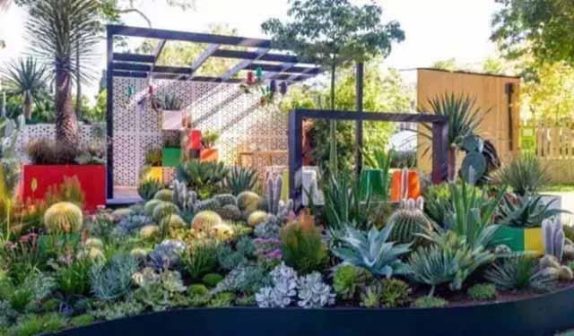 植物这样种植搭配,为你的庭院加分不少