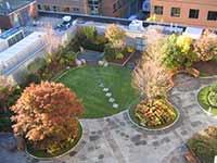 屋顶花园绿化设计浅析