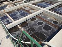 焦化废水深度处理技术