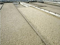 污泥膨胀的机理及影响因素详解