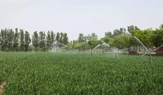 农田水利工程与生态系统发展研究